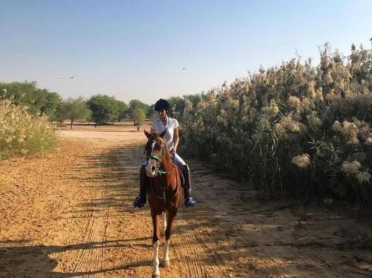 HORSEBACK RIDING IN THE DESERT